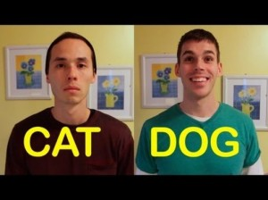 Cat versus Dog