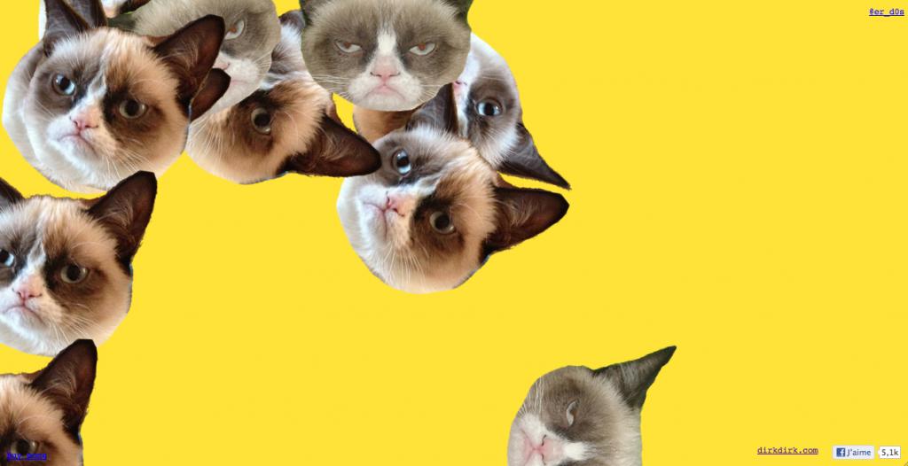 www.bringinthecats.com