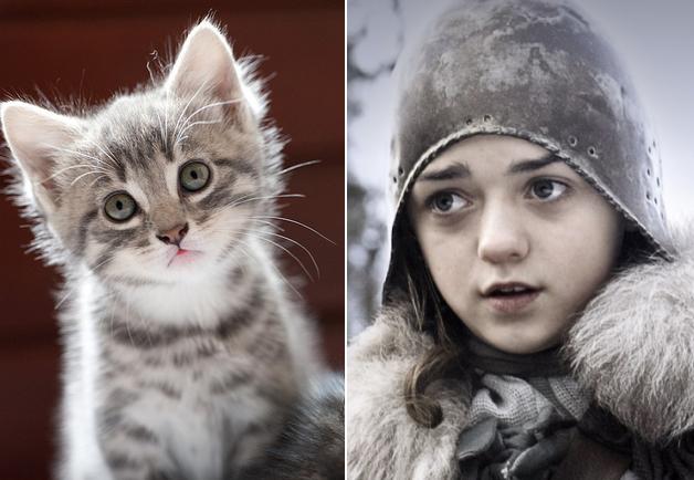 game-of-thrones-Arya-Stark