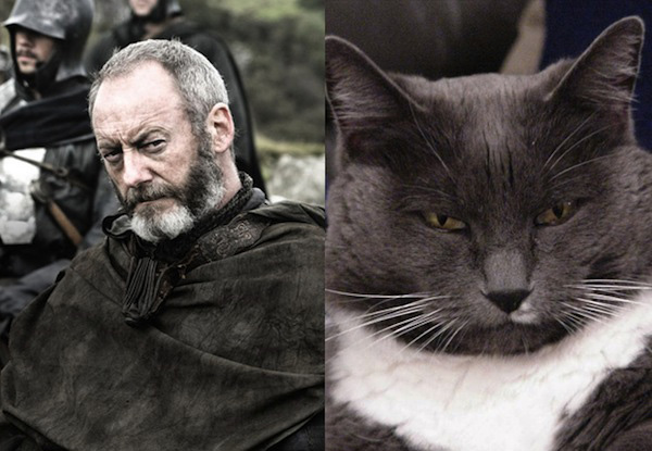 game-of-thrones-Davos-Seaworth