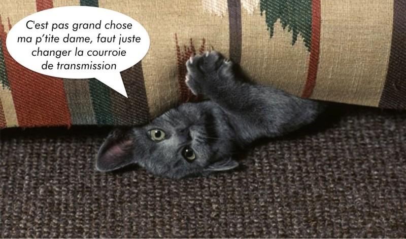aristide le blog du f lin urbain le canap le plus cat friendly du monde. Black Bedroom Furniture Sets. Home Design Ideas