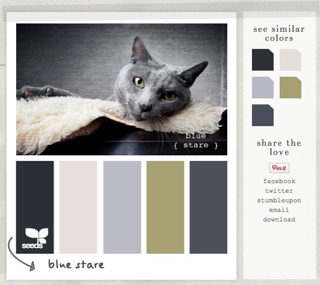 "Design Seeds palette ""féline"""