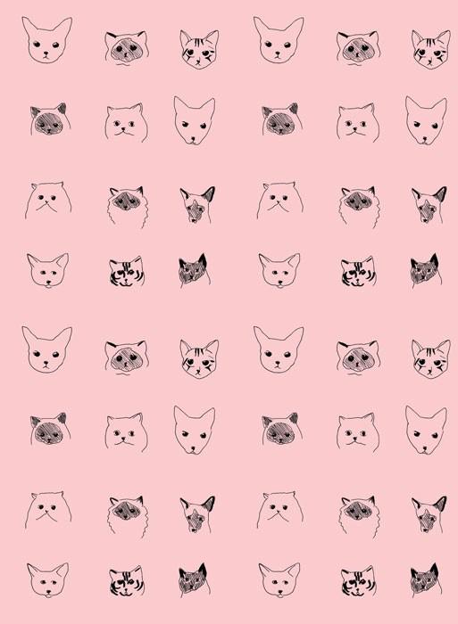 Papier peint chat Baines & Fricker