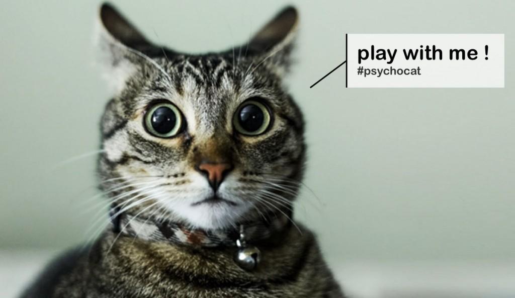 Joue avec moi, joue avec moi, joue avec moi