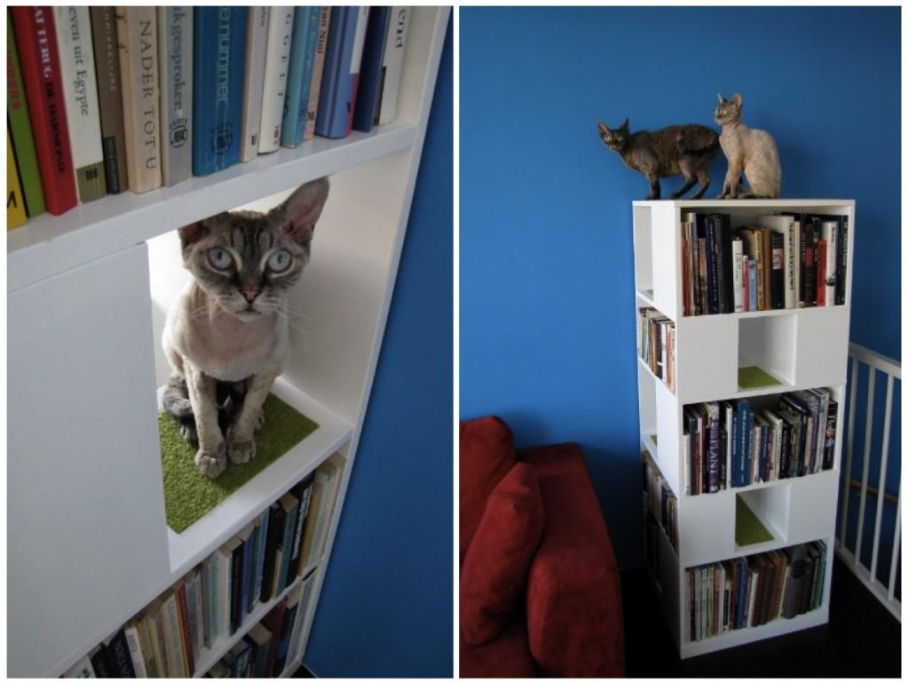 urbancatdesign-blibliothèque-chat-1