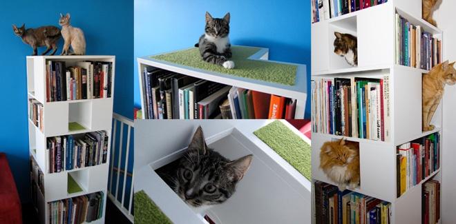 urbancatdesign-blibliothèque-chat-4