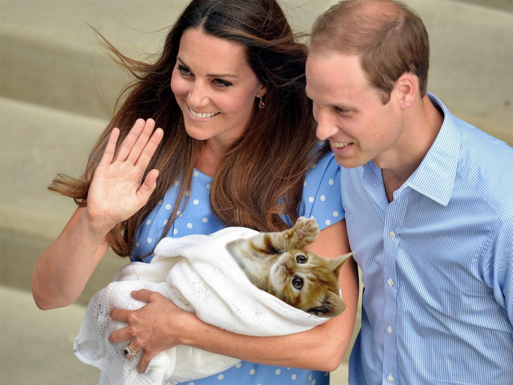 Le Royal Baby ARISTIDE