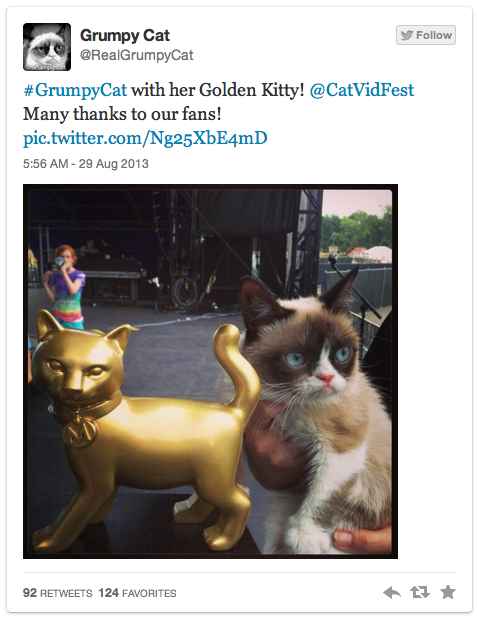 grumpy-cat-kitty-award