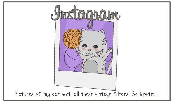 Instagram-expliqué-par-des-chats