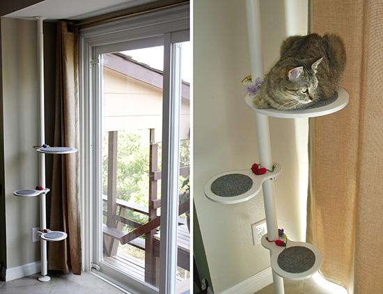 aristide le blog du f lin urbain un arbre chat qui. Black Bedroom Furniture Sets. Home Design Ideas