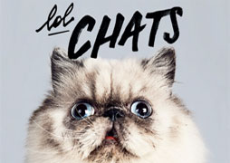 lolchat-cover-small