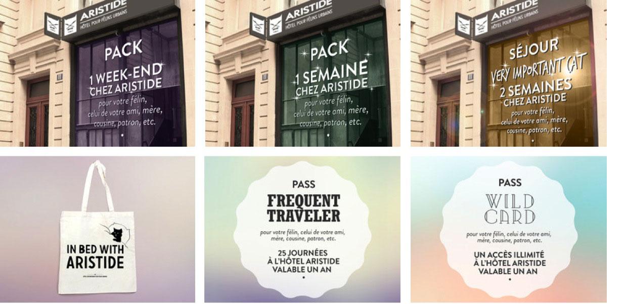 ARISTIDE - le 1er hôtel pour chats à Paris