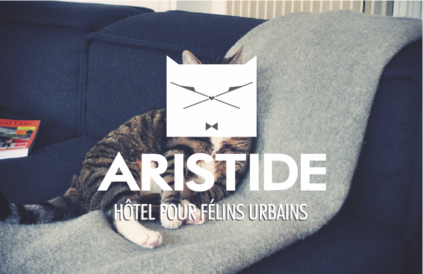 aristide-hotel-chats-paris-carte