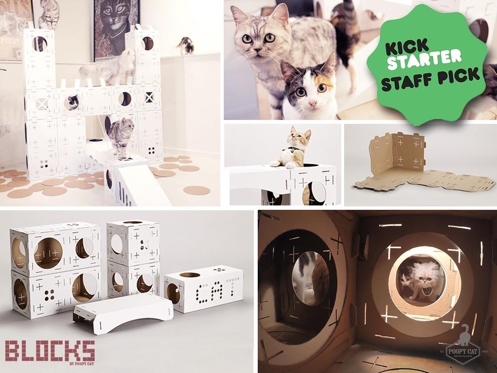 PoopyCat Blocks cartons pour chats Kickstarter