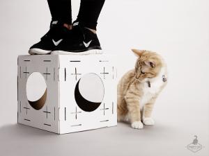 poopy-cat-block