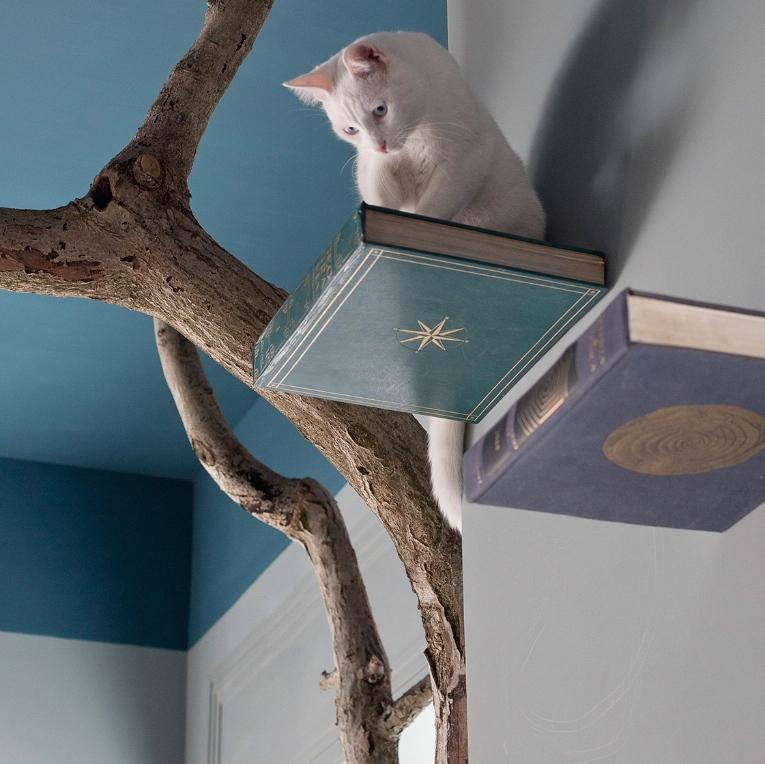 romeow-cat-bistrot11